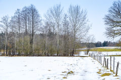 Winter scenery Osterseen Royalty Free Stock Image
