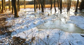 Winter scenery panorama Stock Photography