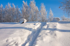 Winter  scenery in park Stock Photography