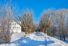 Winter  scenery in park Royalty Free Stock Image