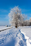 Winter  scenery in park Royalty Free Stock Photo