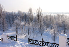 Winter  scenery in park Royalty Free Stock Images