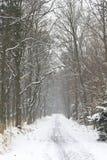 Winter scenery in Poland Stock Photos