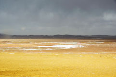 Winter Scenery in Qinghai-Tibet Plateau Stock Photography