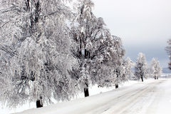Winter scenery. The road covered in snow on a winter day Stock Image