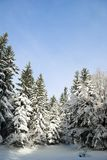 Winter scenery in Slovenia Stock Photography