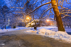 Winter scenery of snowy park in Gdansk Royalty Free Stock Photo