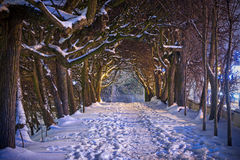 Winter scenery in snowy park of Gdansk. Poland Royalty Free Stock Photos