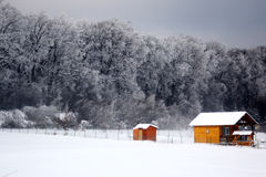 Winter scenery. A sunny but windy winter day Stock Photography