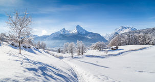 Winter scenery with trees and mountain tops in the Alps Stock Image