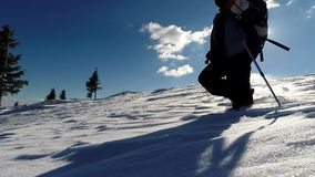 Winter scenery with a trekking woman in the snow stock footage
