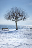 Winter scenery at Tutzing Bavaria Stock Images
