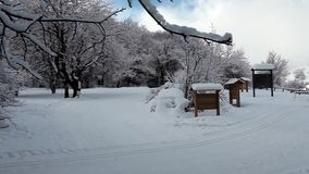 Winter Scenery stock video footage