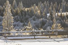 Winter scenery. In Tihuta Pass Royalty Free Stock Images
