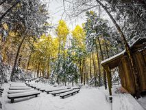 Free Winter Scenes At South Mountain State Park In North Carolina Royalty Free Stock Images - 94418709