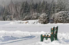 Winter scenes with bench Royalty Free Stock Images