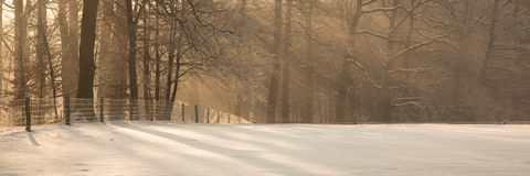 Winter Scenic Royalty Free Stock Photos