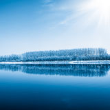 Winter scenic of a lake with snow covered trees Royalty Free Stock Photos
