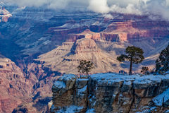 Winter Scenic Landscape Grand Canyon Stock Image