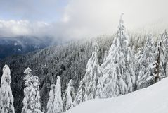 Winter scenic in North Vancouver Stock Photography