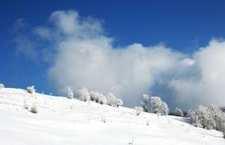 Winter Scenics Stock Photography