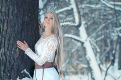 Winter-Schönheits-Frau Schönes Mode-Modell-Mädchen mit Schneefrisur und -make-up im Winterwaldfestlichen Make-up und -maniküre lizenzfreie stockfotos