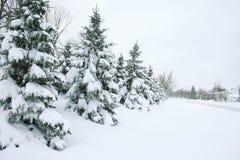 Winter: Schnee abgedeckte Straße, Bäume und Häuser Stockbild