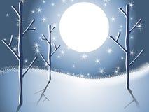 Winter-Schnee-Baum-Nachtszene 2