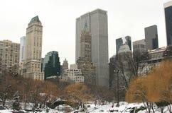 Winter-Schnee in Central Park Lizenzfreie Stockbilder