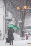 2017-Winter-Schneewinterlandschaft Lizenzfreies Stockbild