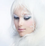 Winter-Schönheit Lizenzfreies Stockfoto