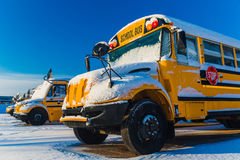 Winter School Bus Royalty Free Stock Image