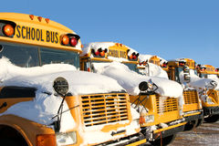 Winter School Buses. A row of school buses covered in snow stock photos