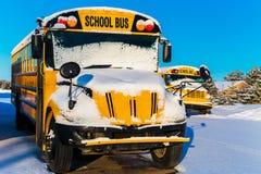 Winter School Buses Royalty Free Stock Photo