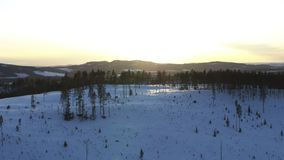 Winter in Schweden stock footage