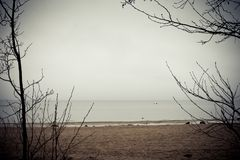 Winter sea Royalty Free Stock Photos