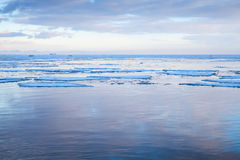 Winter Sea coastal landscape with floating ice Stock Image