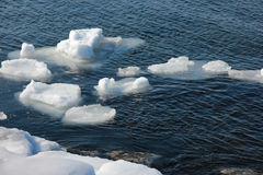 Winter sea with floes stock images