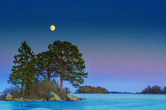 Winter sea landscape with moon Stock Image