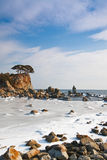 Winter sea landscape, sea ice Stock Photos