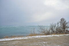Winter sea and sky. Winter landscape with sea and sky Stock Photos