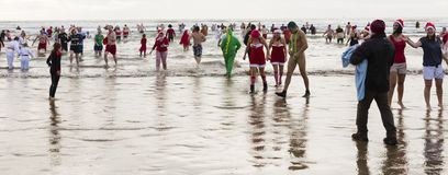 Winter sea swim Royalty Free Stock Images