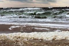 Winter sea view Stock Image