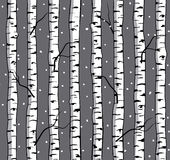Winter Seamless Pattern with Birches Royalty Free Stock Photography