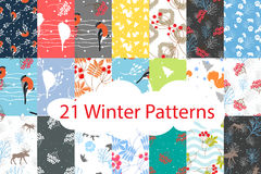 Winter seamless pattern bundle set Stock Photography