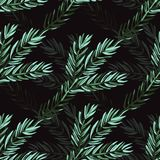 Winter seamless pattern. Elegant seamless pattern with hand drawn decorative fir tree branches, design elements. Can be used for winter holiday invitations Stock Photos