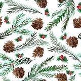 Winter seamless pattern. Elegant winter seamless pattern with holly berries,cons and fir tree branches, design elements.Can be used for winter holiday Royalty Free Stock Images