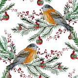 Winter seamless pattern. Elegant winter seamless pattern with watercolor birds and fir tree branches, design elements. Can be used for winter holiday invitations Stock Image
