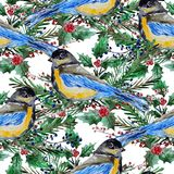 Winter seamless pattern. Elegant winter seamless pattern with watercolor birds and fir tree branches, design elements. Can be used for winter holiday invitations Stock Images