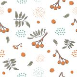 Winter Seamless Pattern with hand drawn cute rowan berries on wh. Ite background. For posters, wrapping paper, card, postcards, wall art, textile, wall art Stock Images